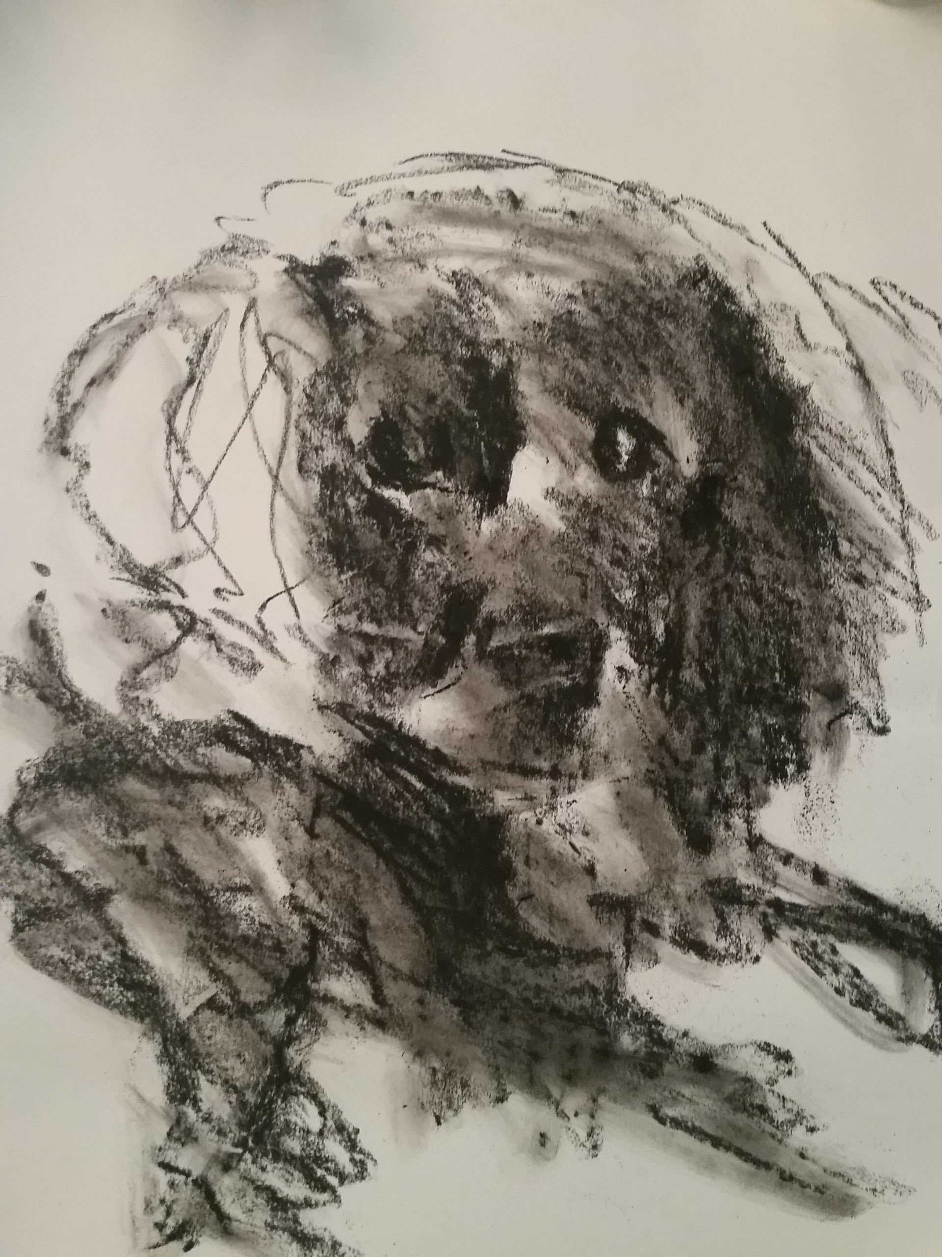 <p>I&#8217;m launching a new project where I post a drawing or painting with a dog as the subject on Instagram for 365 days. Why? One reason is it&#8217;s a way for me to practice my skills as an artist. Another reason is I want to build a daily habit and [&hellip;]</p>